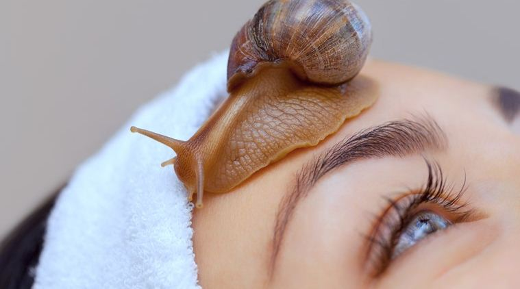 Cosmetological procedure. Beautiful young woman with a snail ahatin on her face in a beauty salon.